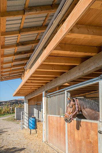 20171103-Holz-Ueli Bauten-009