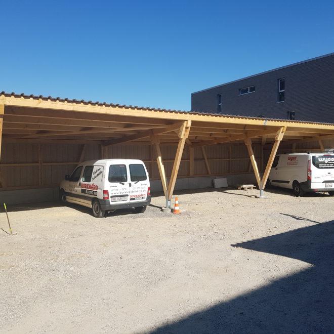 Holz Ueli Autount (1)