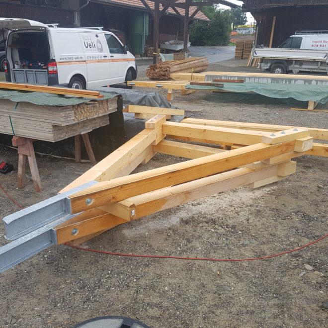 Holz Ueli Autount (4)